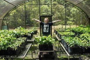 Daintree Rainforest Plant Nursery