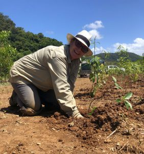 International Tree Planting Day at NightWings 2020
