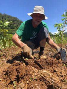 International Tree Planting Day at NightWings 2020 - Rob Corner