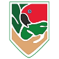 Rainforest Guardian Logo (no text)