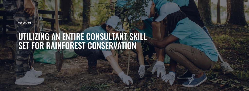 UTILIZING AN ENTIRE CONSULTANT SKILL SET FOR RAINFOREST CONSERVATION