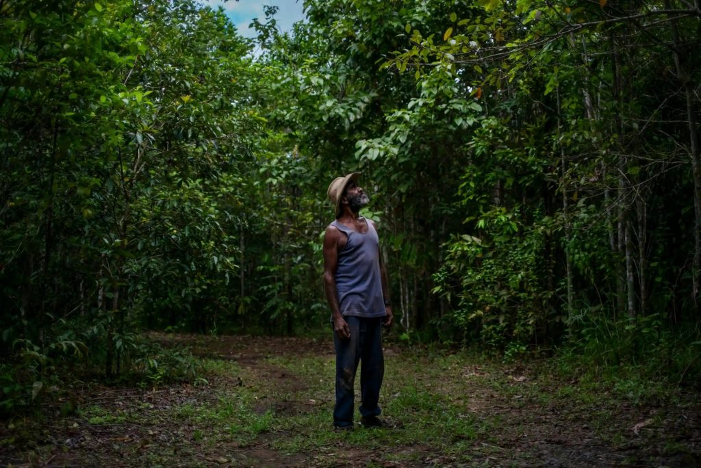 Andrew John Solomon, a Kuku Yalanji traditional owner of the Daintree, which was regenerated by Rainforest Rescue over a 10 year period. Photo by Sean Davey/Guardian